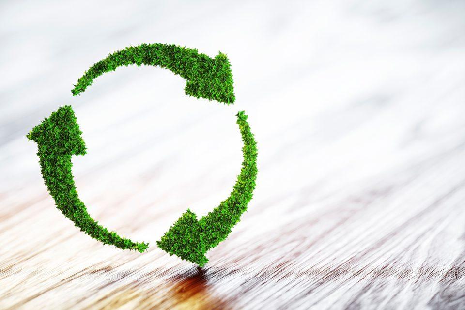 Selos de sustentabilidade em obras: quais são e por que investir?